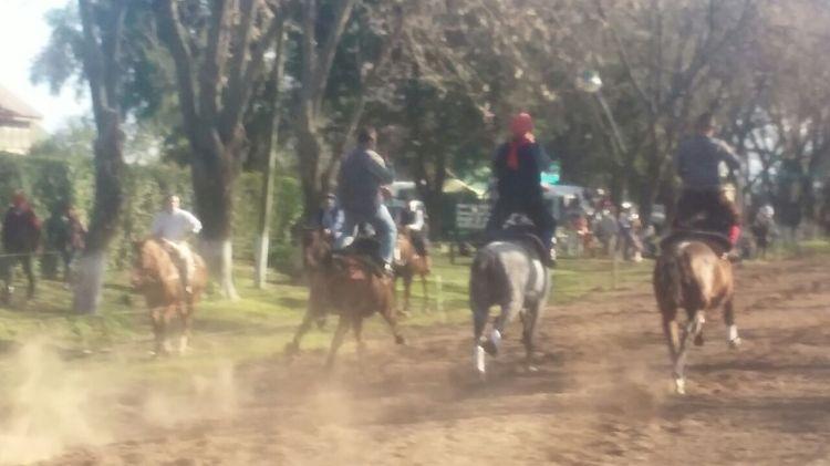Peón rural (11)